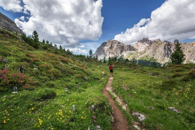Backpacker hiking through a meadow of wildflowers in the mountains.